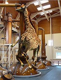Giraffe Orgy
